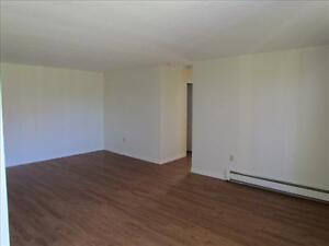 2 Bedroom Apartment for Rent MINUTES TO DOWNTOWN! Kitchener / Waterloo Kitchener Area image 2