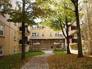 Ridout and Horton: 59 Ridout Street, Jr 1BR London Ontario image 2
