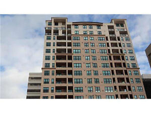 Gorgeous FULLY FURNISHED 2 Bedroom, 2 Bath Condo in Downtown