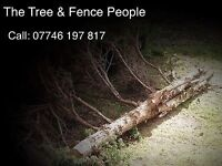 T&F Tree Surgeon, Fencing and Gardener