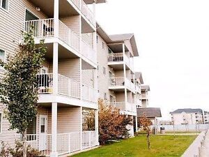 2 Bedroom, 2 Bath Available for Immediate Sublet
