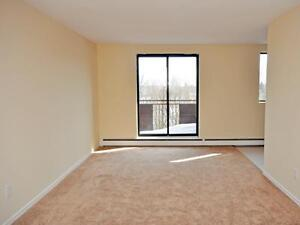 Fischer-Hallman Rd. and Victoria St. S: 21 Dalegrove Drive, 1BR Kitchener / Waterloo Kitchener Area image 3