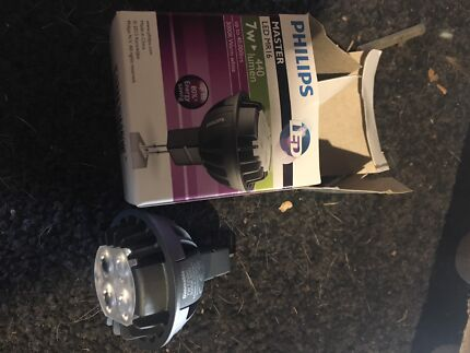 Philips LED dimmable 12v globe