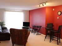 2 Bedroom 2 Bathroom Furnished Condo in Ellerslie Edmonton