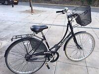 ladies bike bronx vintage