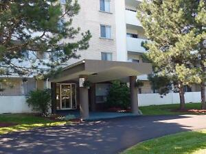 2 BEDROOM APT- AVAILABLE - $250 VISA CARD AWARDED AFTER MOVE IN Kitchener / Waterloo Kitchener Area image 4