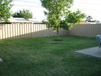 Moving - Last chance for Back Yard Garage Sale
