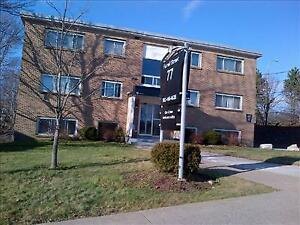 Nivens Ave and Windmill Rd: 6 - 16 Nivens Avenue , 1BR