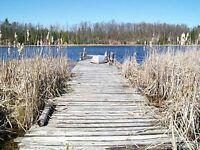 New Price! Calabogie/stones Lake Waterfront lot for sale