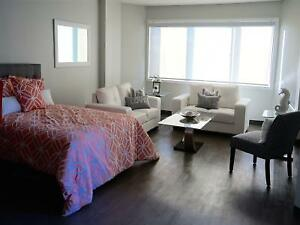 *FREE RENT* Large Modern Bachelor ~ Downtown Highrise! ~209