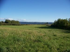 Ocean view 6 acres in Malagash, NS