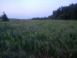 PEI LAND FOR SALE