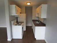 High Quality, Low Price! 1 and 2 bedrooms from $1350, $399 SD!