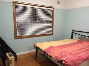 Big STUDENT Room North Manly, Bills Included, Close to EVERYWHERE North Manly Manly Area Preview