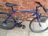 mans mountain bike/bicycle/bike