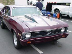 Looking for a nova grill