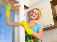 Efficient and Reliable Cleaners. 2hrs for $28