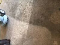 *30% OFF* CARPET CLEANING, AREA RUGS, UPHOLSTERY