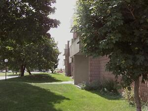 1 BR Available for rent in Stratford, ON Stratford Kitchener Area image 6