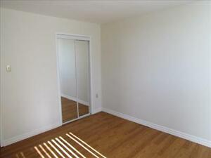 GREAT 1 Bedroom Apartment for Rent Minutes to Downtown! Kitchener / Waterloo Kitchener Area image 5