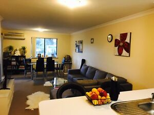 New fully furnished bed room with a own  bathroom in Greenslope Greenslopes Brisbane South West Preview