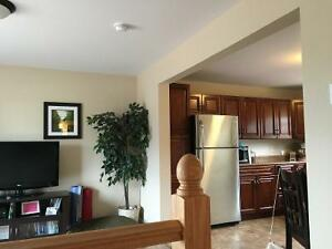 Two 2 bedroom apartments in amherst