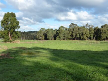 For Sale. 4ha Nannup area. REDUCED to sell. Jalbarragup