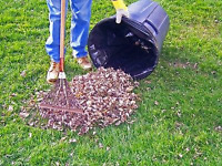 Fall Leaf Clean Up and Landscaping