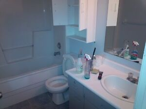 Free Estimate Cleaning Services Kitchener / Waterloo Kitchener Area image 10