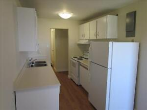 2 Bedroom Apartment for Rent MINUTES TO DOWNTOWN! Kitchener / Waterloo Kitchener Area image 7