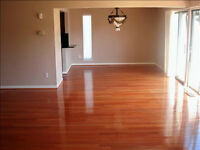 MOVE IN / OUT GENERAL CLEANING 403 4651766
