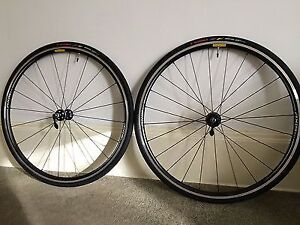 Brand New Specialized Wheelset With Tires