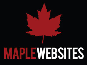 Website Design - Affordable High End Creations! London Ontario image 1