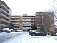 Hamilton 1 Bedroom Apartment for Rent: Near McMaster, transit