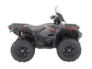 2019 Yamaha GRIZZLY EPS LE