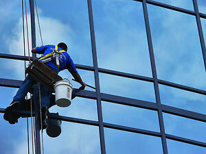 High-Rise window cleaner needed