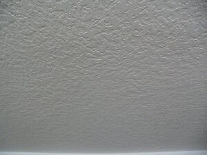 CEILING TEXTURE AND PAINTING - BIG DEALS ON SMALL JOBS