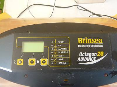 BRINSEA OCTAGON 20 ADVANCE EGG INCUBATOR Chandler Brisbane South East Preview