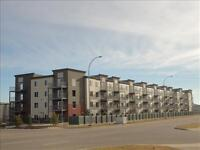1 mth FREE RENT on select suites -Hollick Kenyon