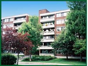Spacious Two Bedroom Apartment On Beautiful Ile-des-Soeurs