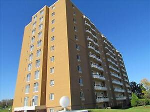 GREAT 1 Bedroom Apartment for Rent Minutes to Downtown!