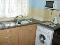 Double Room Available in 3 Bedroom Flat £550pm - Avail end of March