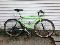 looking for a neon green Raleigh mountain bike , missing