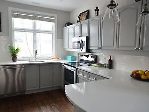 Beautiful 2 BR - furnished - Glebe