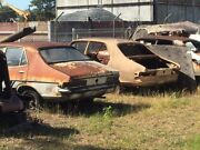 Wanted to buy Holden Torana Cash Paid Any condition HB LC LJ TA LH Newcastle Newcastle Area Preview