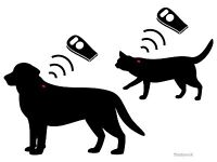 Mobile Microchipping