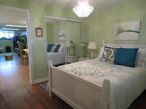 BRIGHT SPACIOUS FURNISHED ONE BEDROOM APARTMENT Kingston Kingston Area image 7