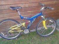 "Raleigh 26"" mountain bike"