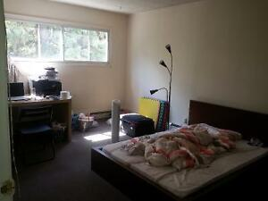 University / Whyte ave Area 2 bedroom apartment - September 1