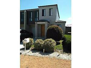 Three bed room house for renting